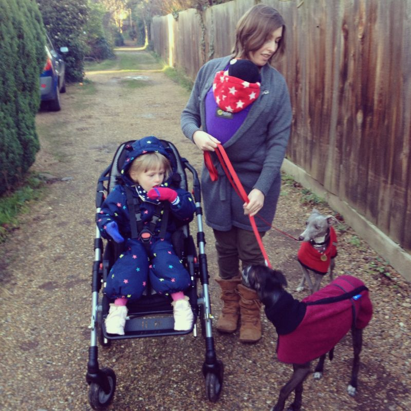 Vaila walking her 2 dogs with EJ in her specialist buggy and carrying baby EW in a stretch wrap